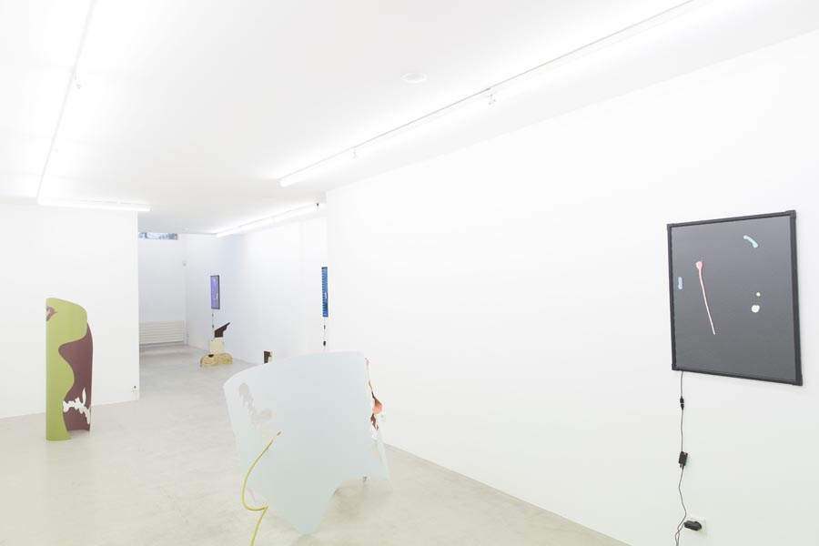 What you see is what you see - Ornis A. Gallery, Amsterdam, 2015_11