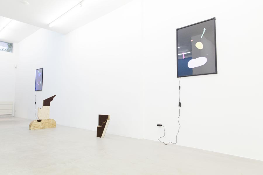 What you see is what you see - Ornis A. Gallery, Amsterdam, 2015_13