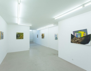 Benoît Hermans, Recent works (exhibition view Ornis A. Gallery, Amsterdam, 2014)