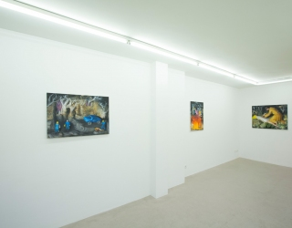 Julius Hofmann - Stony fields (exhibition view Ornis A. Gallery, Amsterdam, 2013)