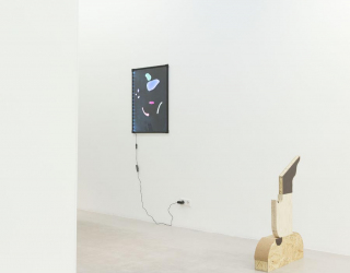 Installation view of 'What you see is what you see', Ornis A. Gallery, Amsterdam, 2016 (Jóhanna Kristbjörg Sigurðardóttir and Bonno van Doorn)