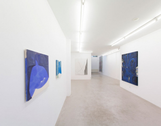 Young New Painters, 2017 (exhibition overview at Ornis A. Gallery) works by Tamina Amadyar and Janine van Oene