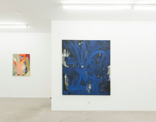 Young New Painters, 2017 (exhibition overview at Ornis A. Gallery) works by Tanja Ritterbex and Janine van Oene